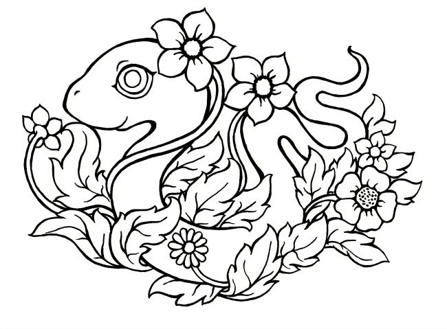 Chinese Zodiac Coloring Pages The Year Of Rooster Chinese Sourcevf ... | 479x650