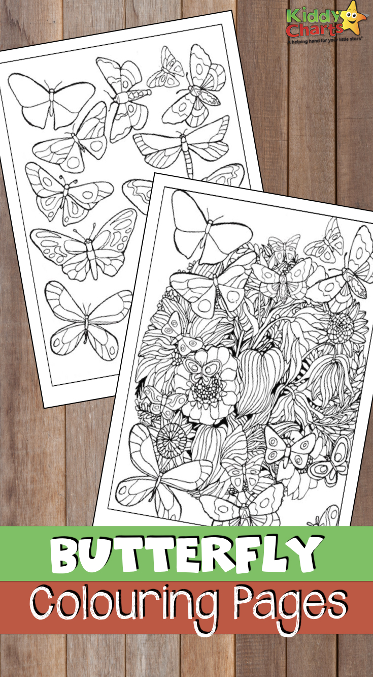 We've got these GORGEOUS butterfly coloring pages both for you and your kids. Go download them now! #coloring #butterfiles #kidscoloring #adultcoloring