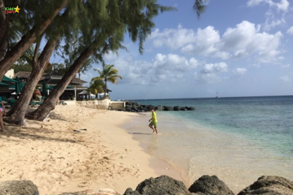 Folkstone Marine Park is a definite visit on our list of things to do in Barbados with kids. Check out our others - and what are yours? #barbados #kids #caribbean