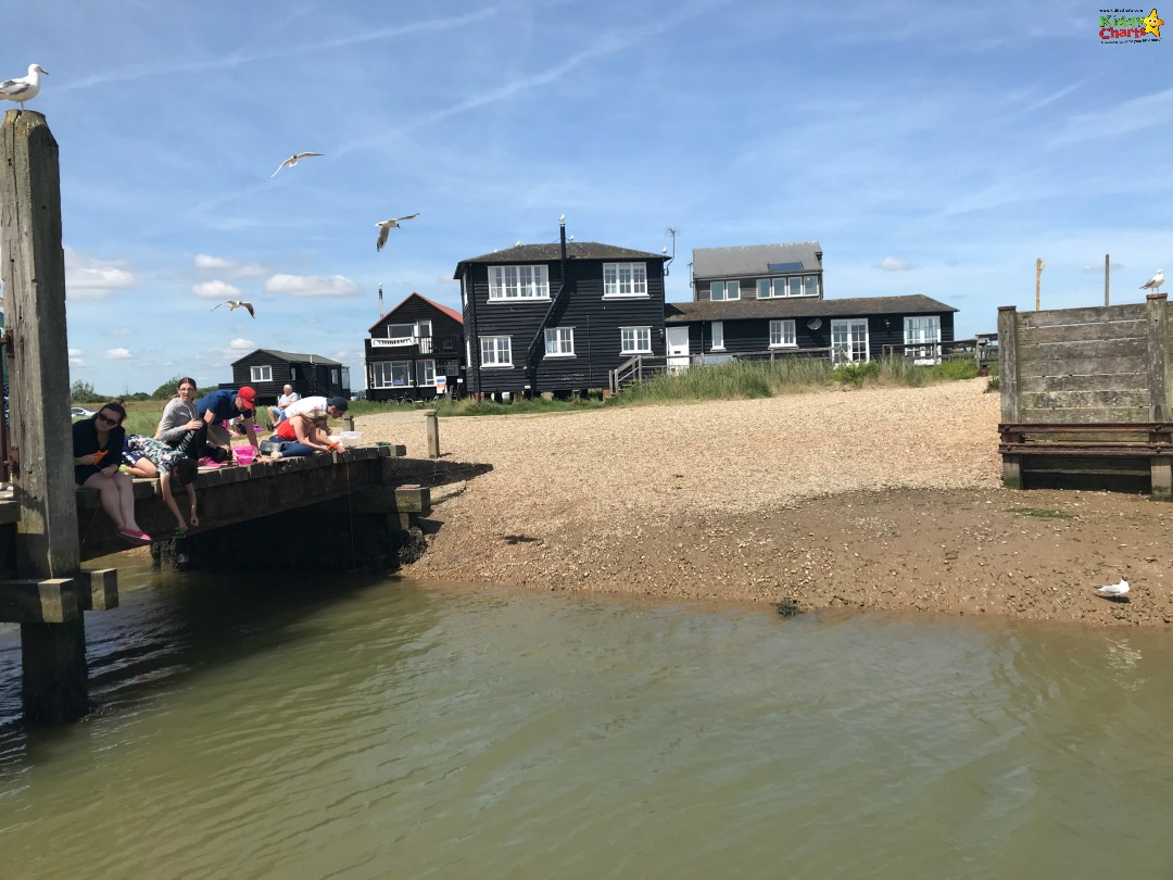 What to do in Norfolk with Kids - how about crabbing. Check out the other ideas too! #norfolk #travel #kids #familytravel