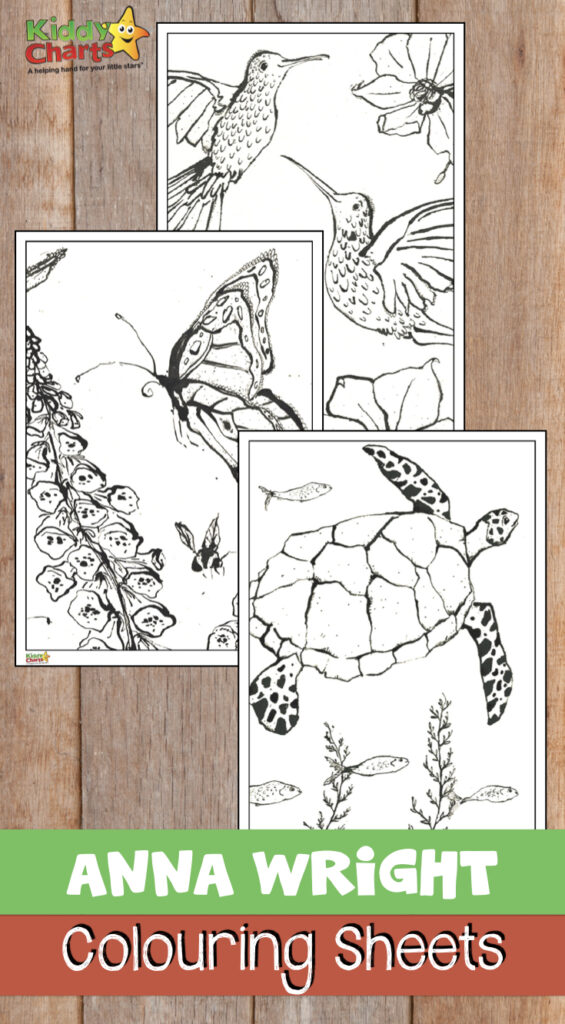 Anna Wright colouring sheets for adults