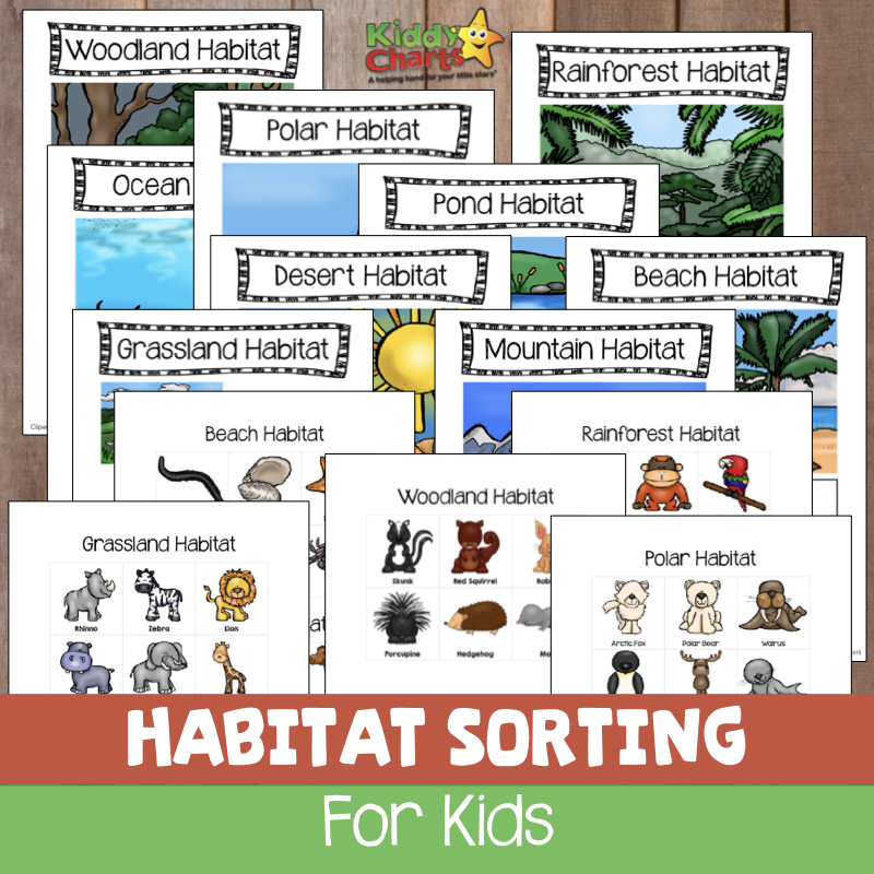 Check out our wonderful Animal Habitats Sorting Game for the kids - so easy to do, and FREE #printables #kids #stem #scienceforkids