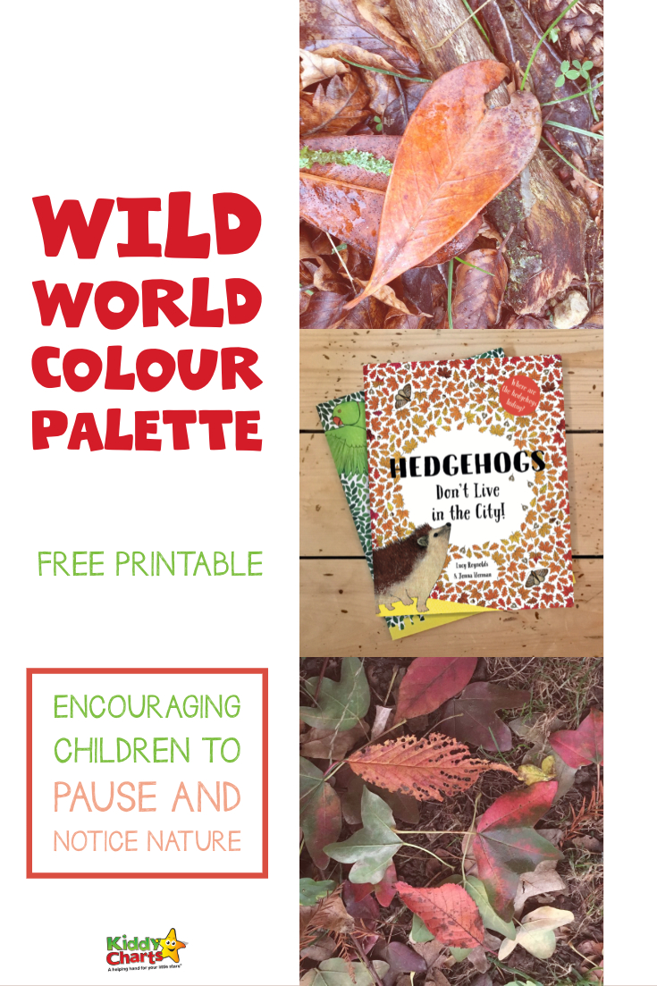 Looking for ways for your kids to connect with nature - we've got this great wild world color palette activity for them to have a go at, alongside reading the fabulous book Hedgehogs Don't Live in the City. Check it out NOW! #nature #kids #colorpalette #forestschool