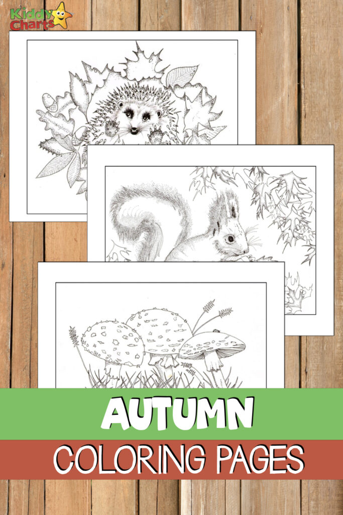 There's something amazing about the autumn season that simply makes us smile over here at KiddyCharts. This is why we wanted to feature some free #autumn #coloringpages for you to enjoy alongside your kids. #Printables