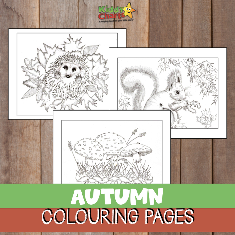 FREE autumn coloring pages for you to enjoy alongside your kids.