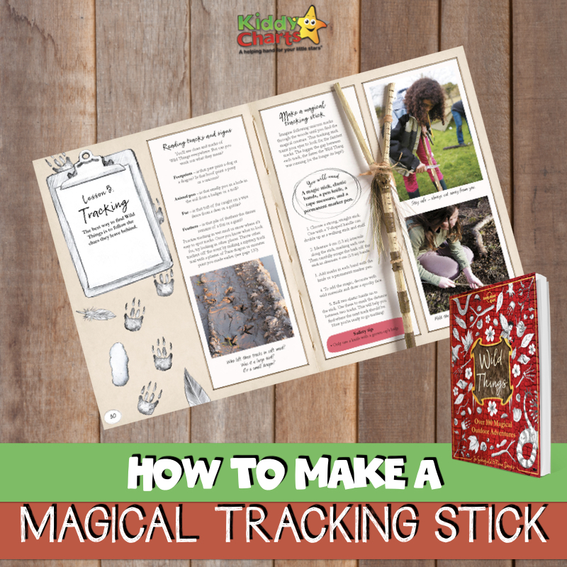 Today we're sharing how to make a magical tracking stick so that you can easily get outdoors and have some fun tracking magical creatures that live among us. #nature #forestschool #kidsactivities #magic #fairies #fairyactivity