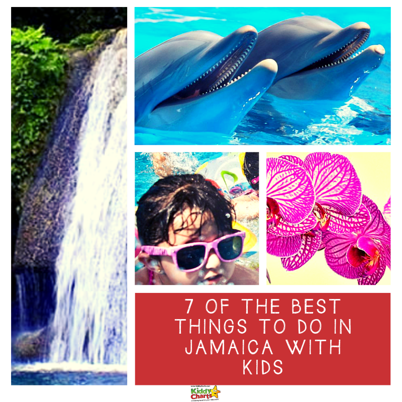 7 of the best things to do in Jamaica with kids