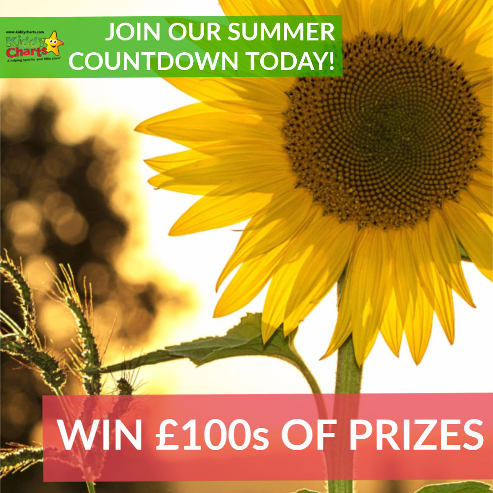 Visit our site now and sign up to our amazing summer countdown, with a giveaway a day from the 8th July, 2019! #giveaways #win #toys #kids #parenting #fun #summer #summeroffun