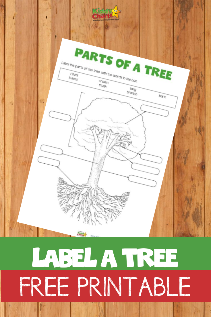 Our Label a Tree free printable can teach your kids so much!