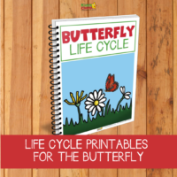 Butterfly lifecycle printables