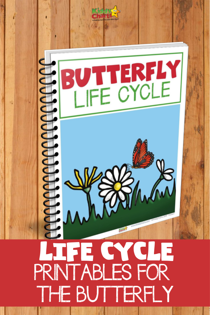 Butterfly lifecycle eBook picture - bound eBook with flowers and a butterfly on the cover.