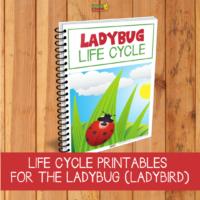 Ladybug Life cycle: Free printables for writing, math and fun!