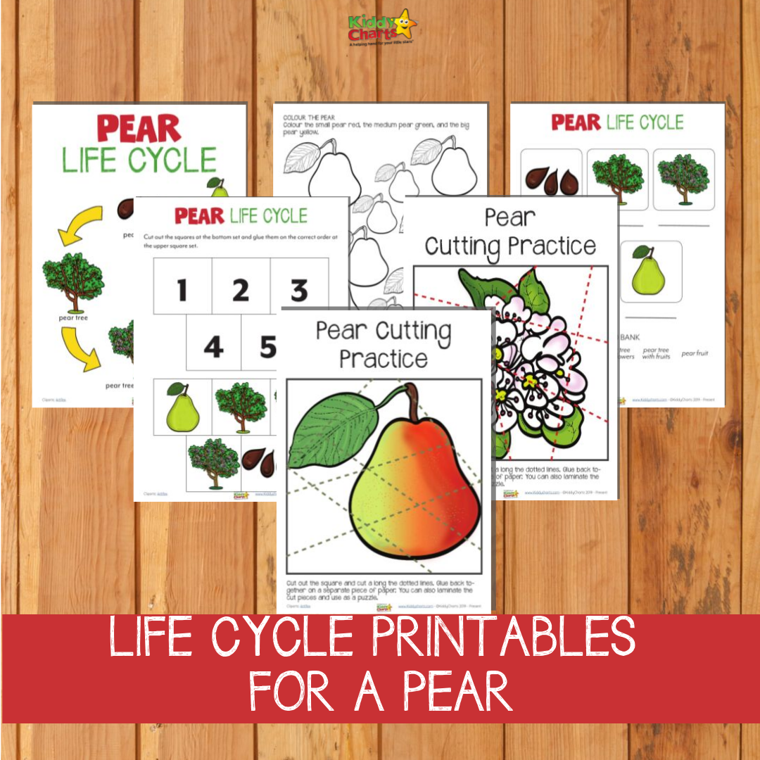 Pear Life Cycle printables you can get from the site on a wooden surface.