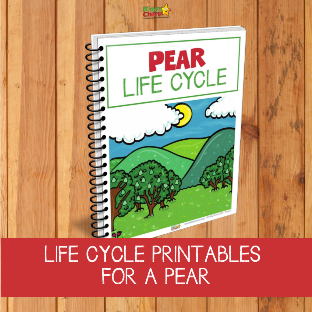 Pear life cycle printables worksheets for kids