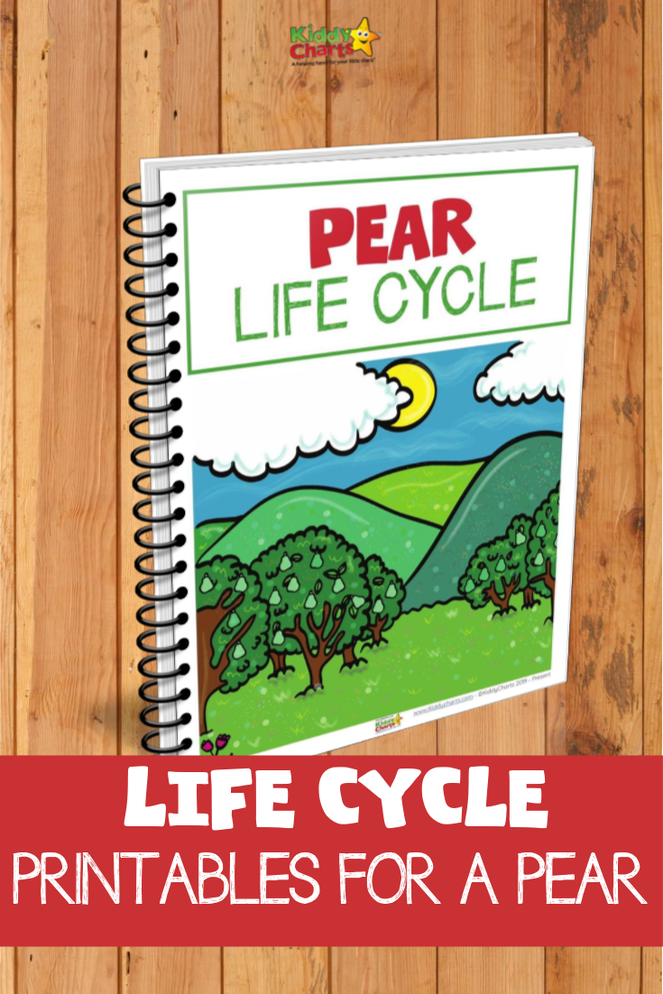 Picture of pear lifecycle printables eBook cover on a wood background.