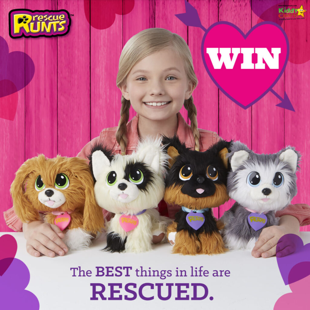 Girl with four rescue runts