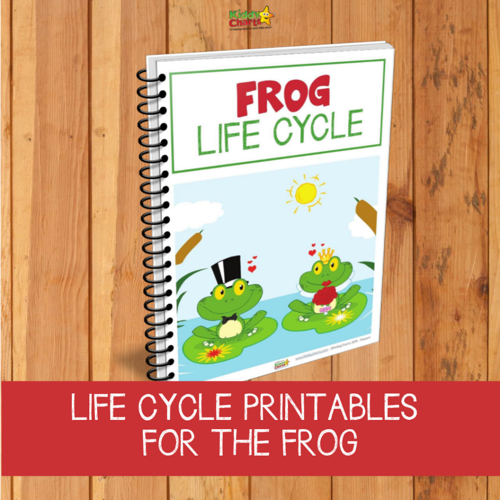 Life cycle of a frog printables and resources for kids