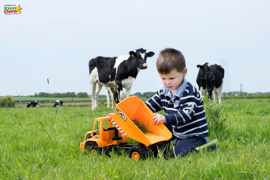 Teamsterz: young boy playing with toy JCB digger in a grassy field.