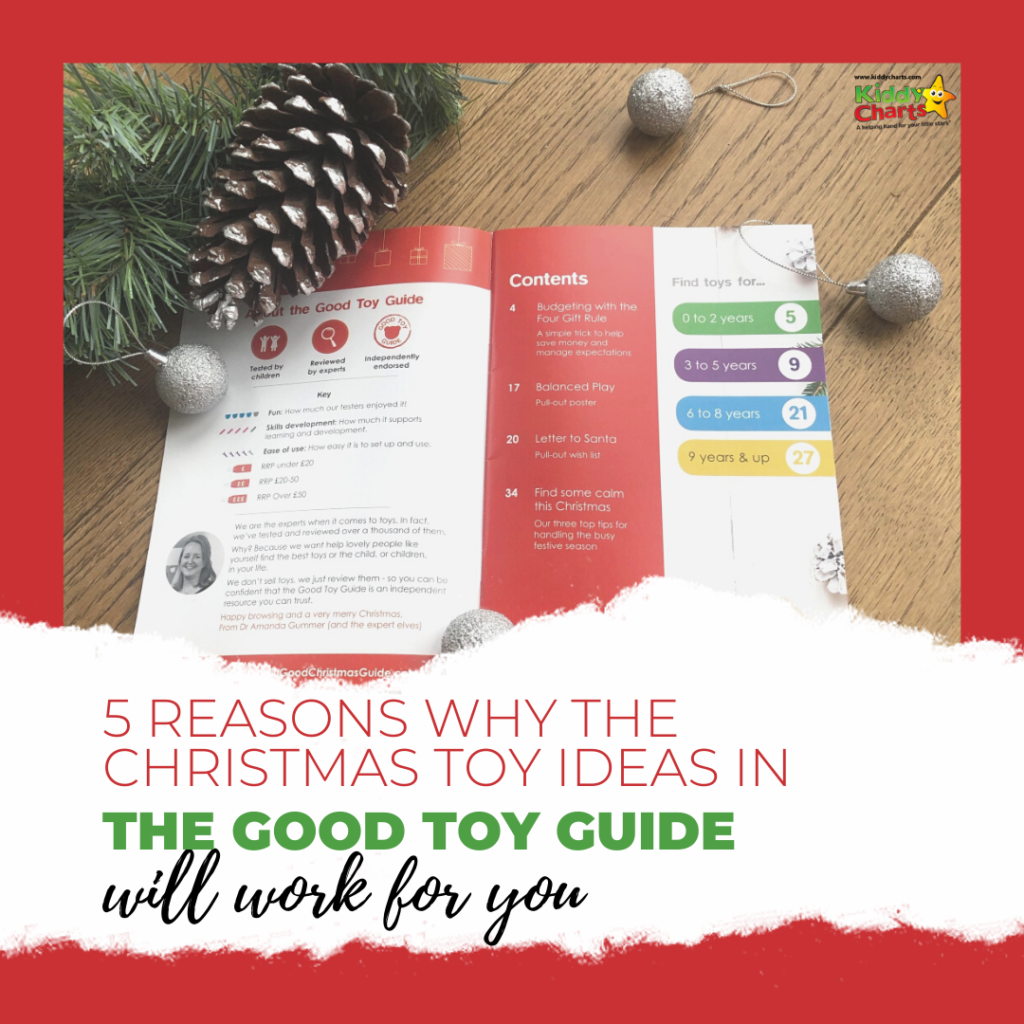 5 reasons why they the Christmas toy ideas in the Good Toy Guide will work for you.