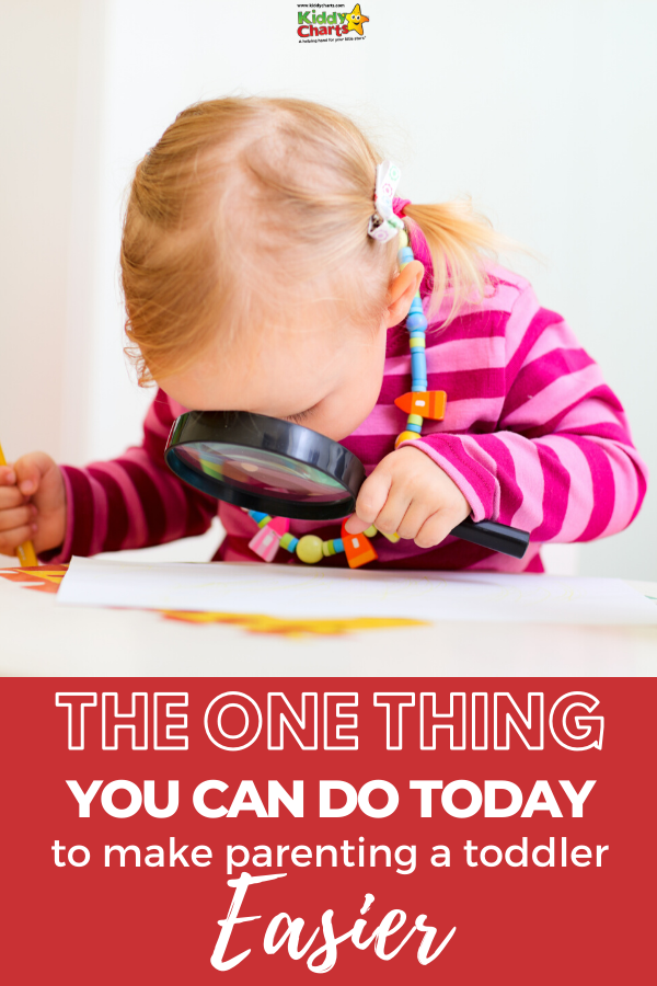 If you want to make toddler parenting a little easier, it's a good idea to try and see things from their perspective