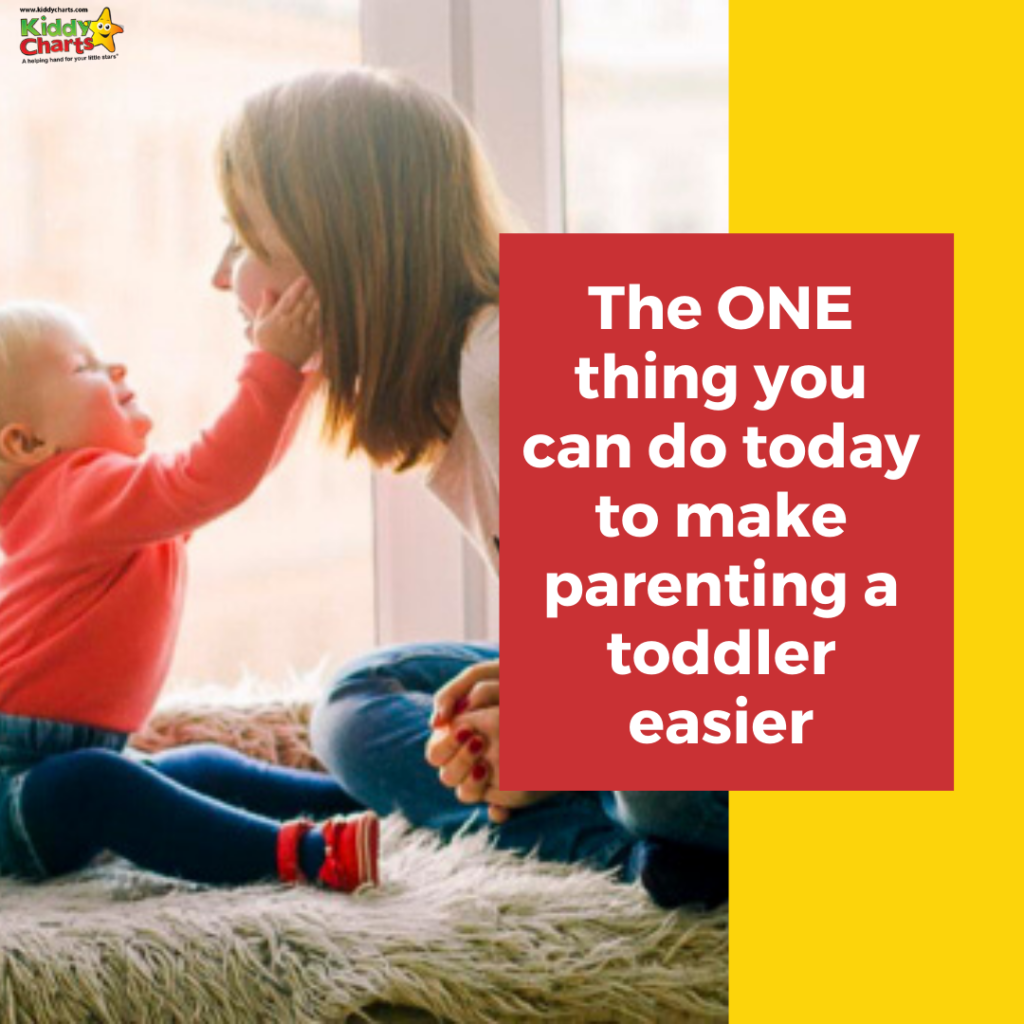If you want to make toddler parenting a little easier, it's a good idea to try and see things from their perspective.