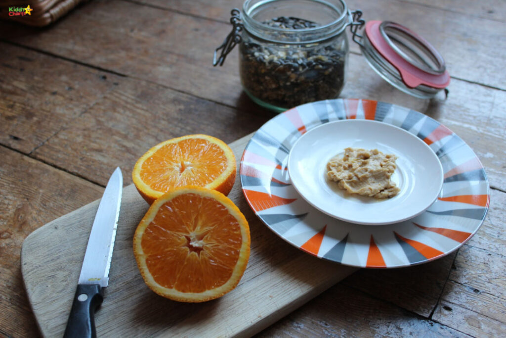 how to bird watch with kids and make your own bird feeder