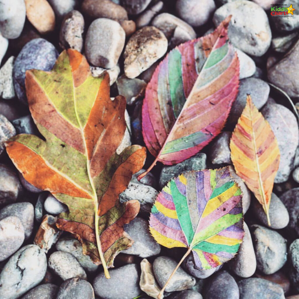 Mindful art activities for children: leaves in different colours on stones #31DaysOfLearning