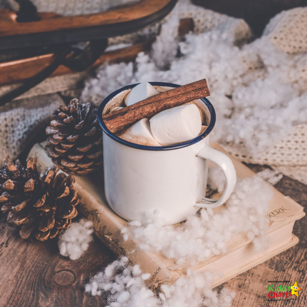 winter scene with hot cocoa on a book