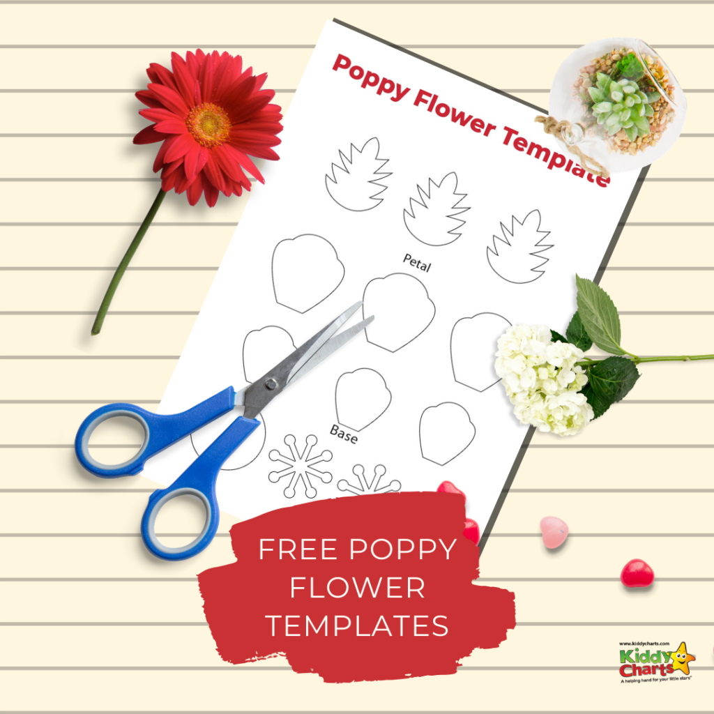 Free poppy flower templates