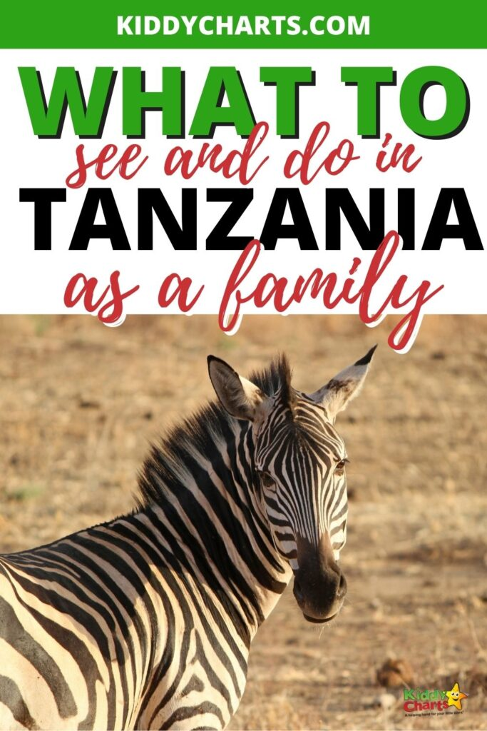 Five of the best family activities in Tanzania