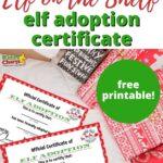 Elf Adoption