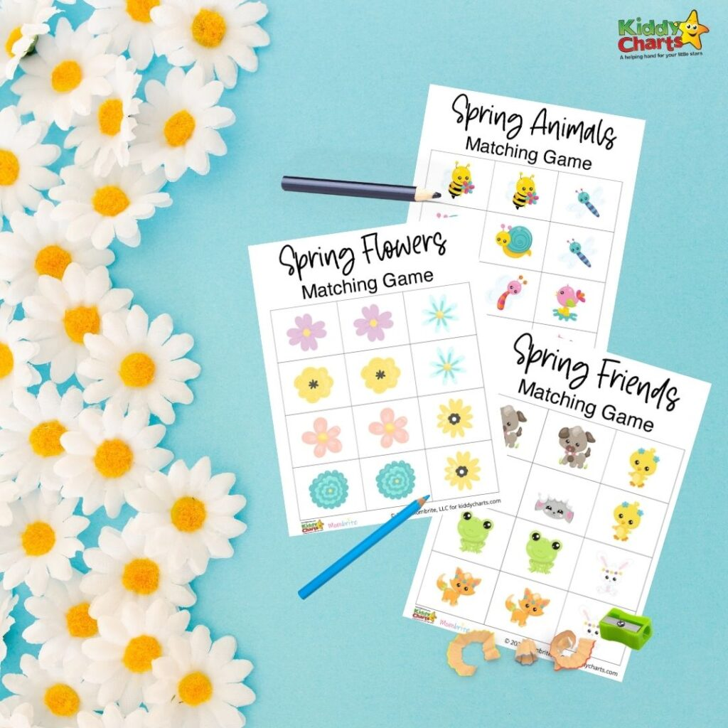Spring memory matching games