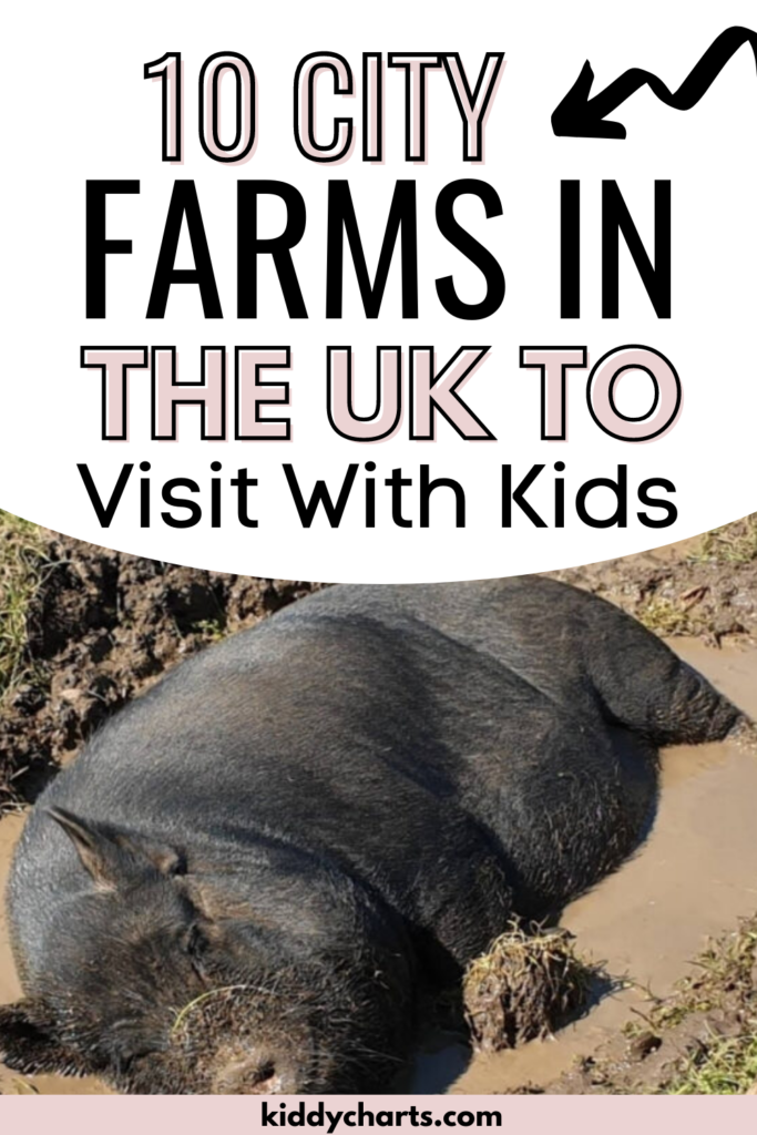 10 City Farms to Visit with the kids