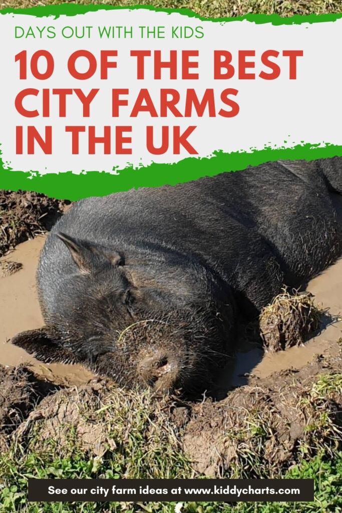 City farms near me