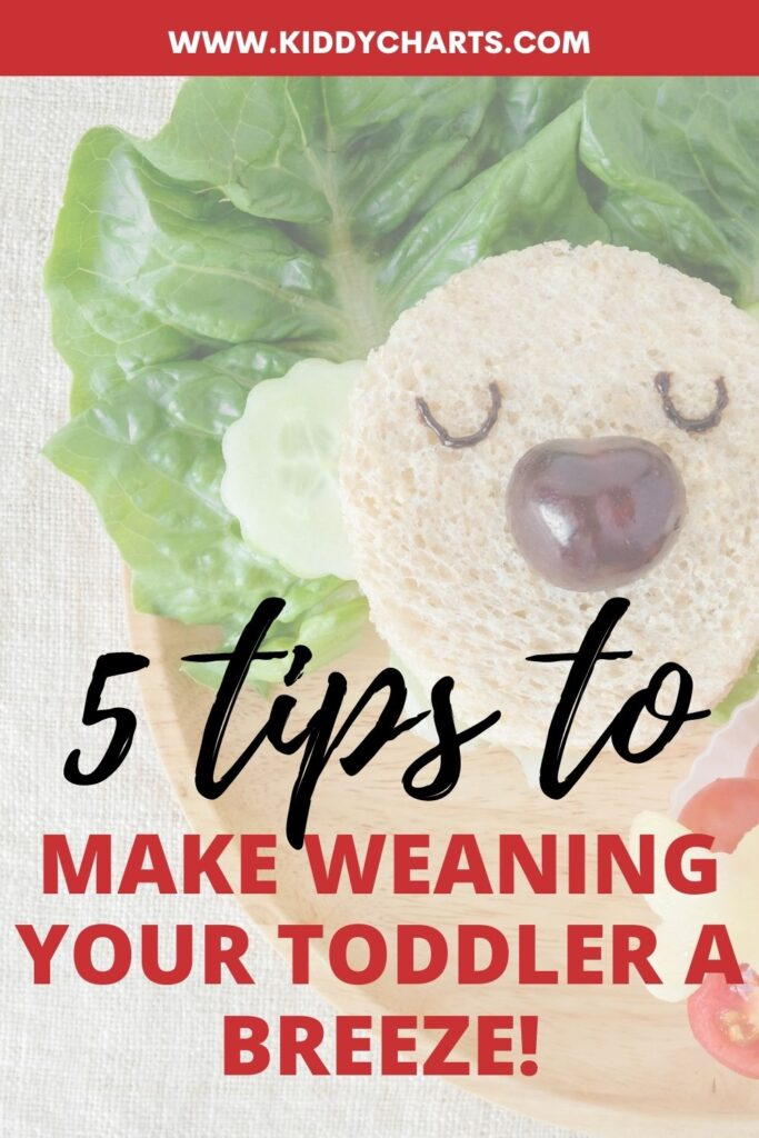Toddler eating: 5 tips to make weaning a breeze