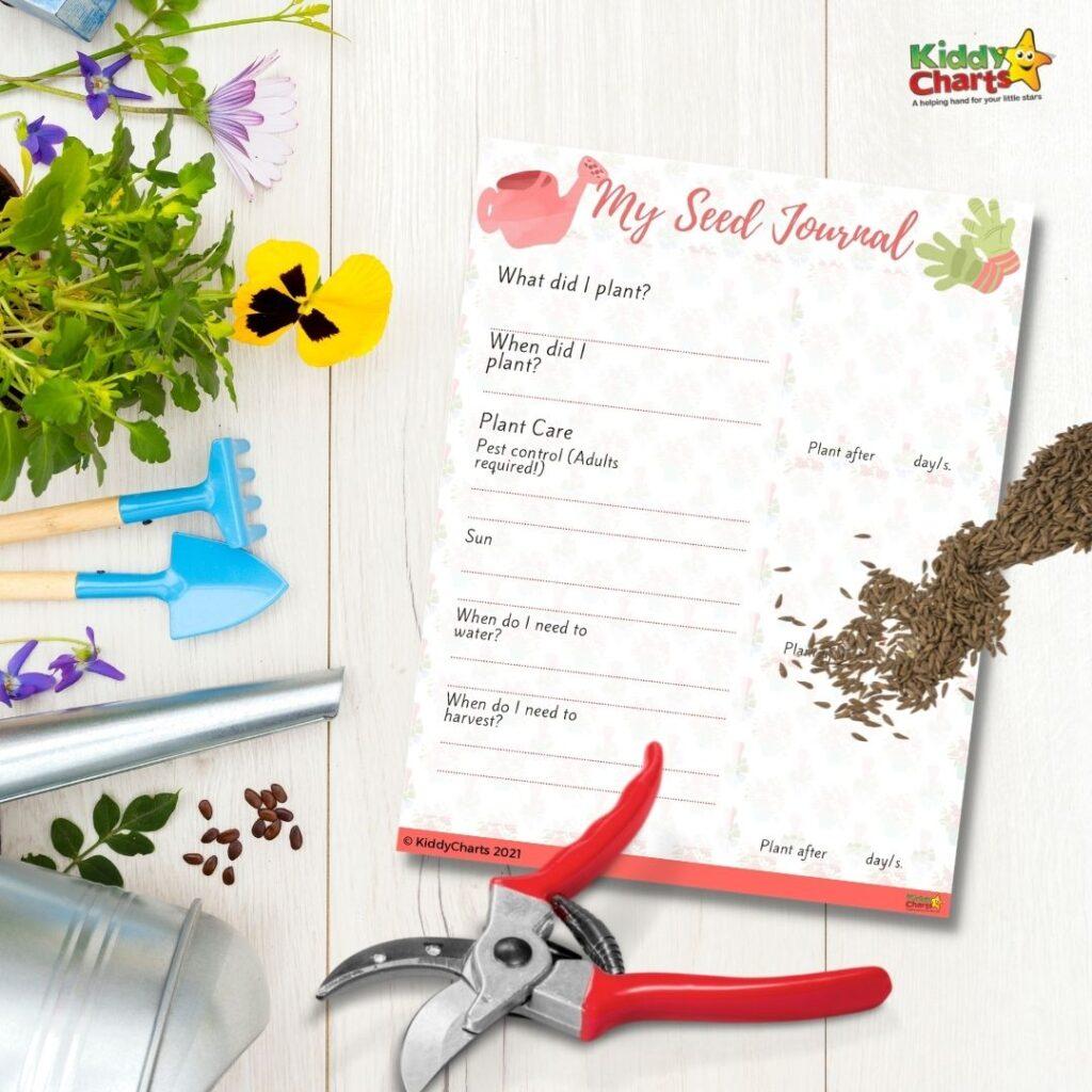 Kids seed journal