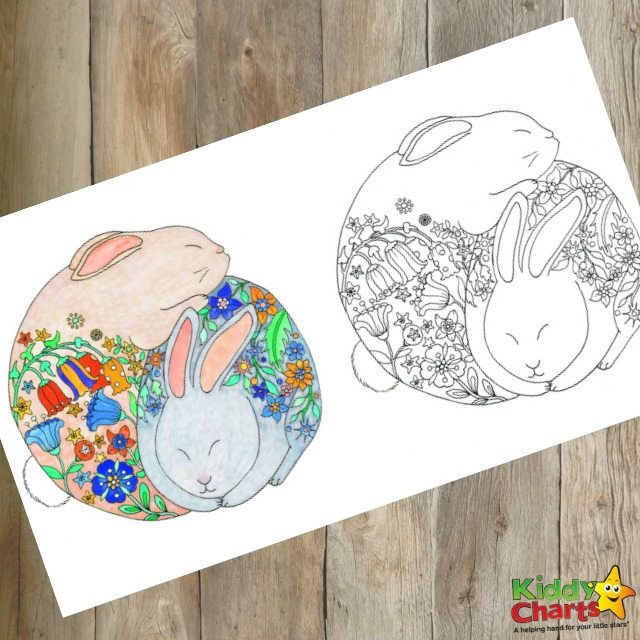 Adorbale bunny colouring page