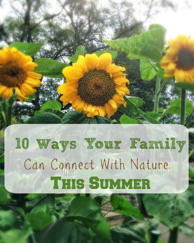 Get closure to nature this summer with our family friendly activities. This is an opportune time to get yourself prepped for a whole summer of fun outdoors.