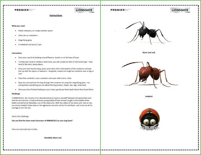 Bug hunt printable