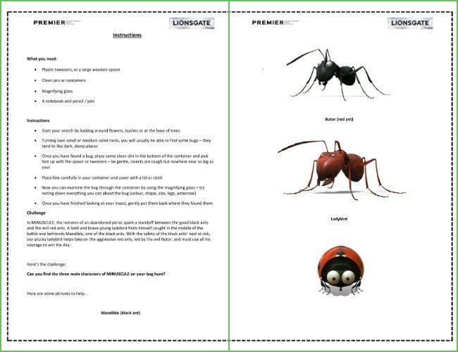 Bug hunt printable