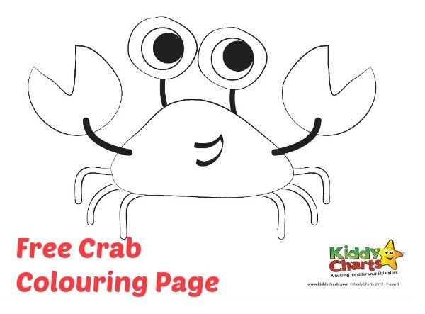 Download this crab colouring page for some summer fun