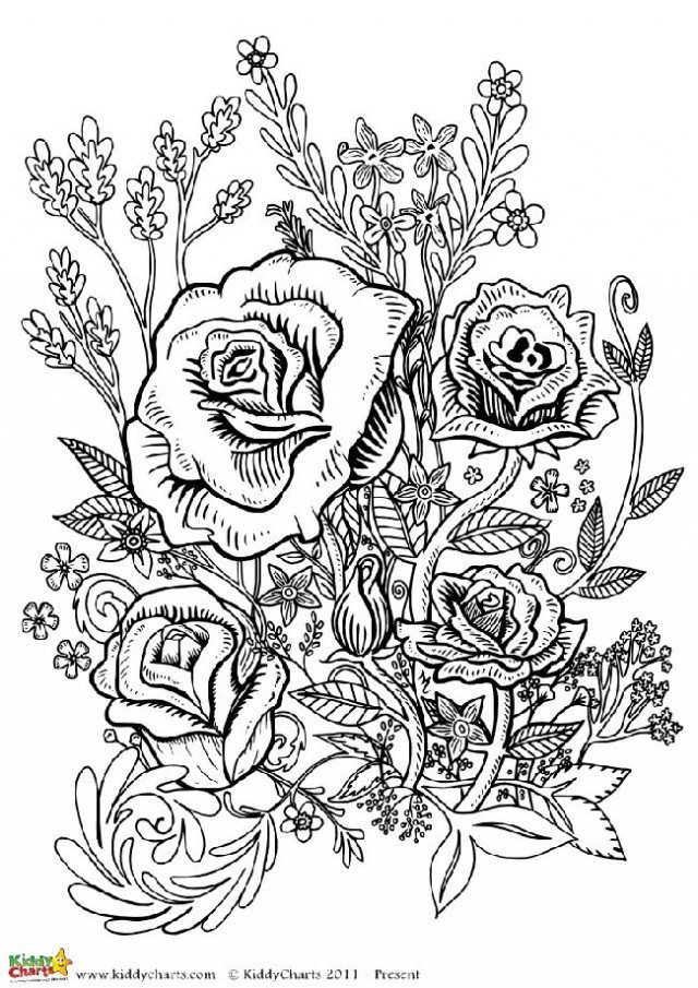 Our final coloring pages for adults is a flower design based on roses, we have another three flower designs on the site. Why not go and check them out?