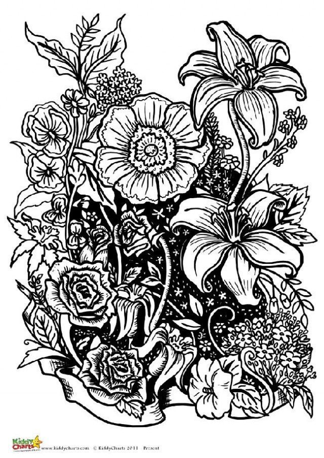 We have another flower design in this collection of coloring pages for adults. There are three more to find on the site.