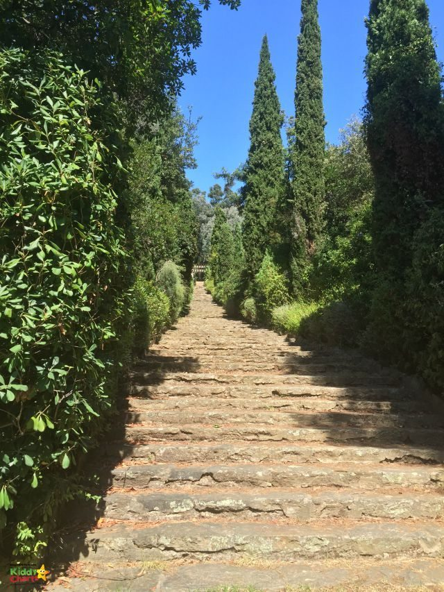 The Domaine du Rayol Gardens are stunning near Saint Tropez - perched on the cliff, with Garden themed on the countries of the world.