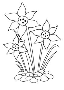 Easter coloring pages: Daffodils