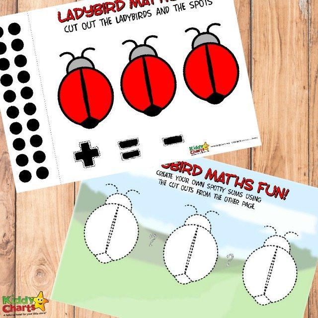 Free Ladybird Printable Math Worksheets for Kids