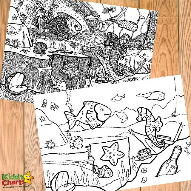Sea creature coloring pages for adults FREE