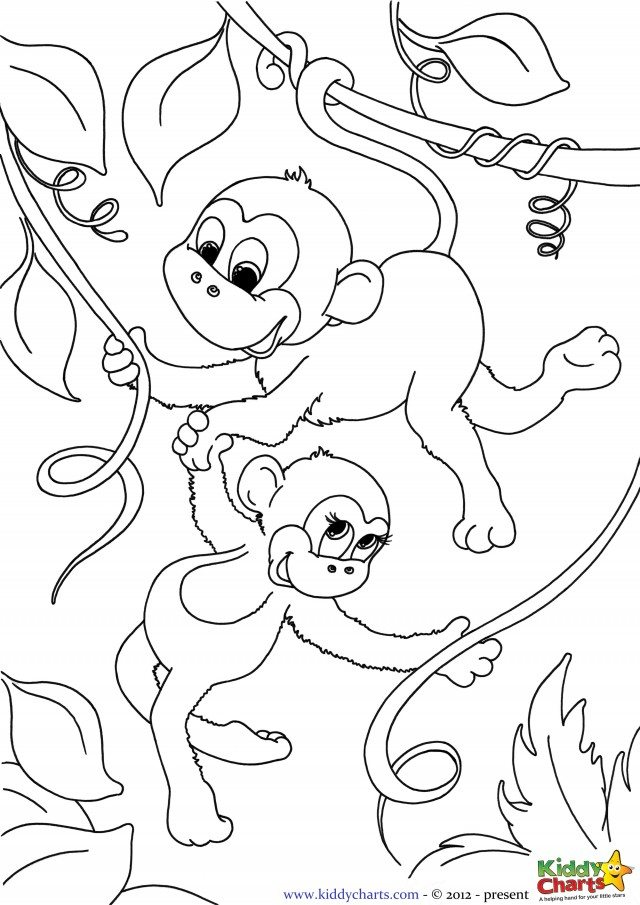 Sizzling image intended for monkey coloring pages free printable
