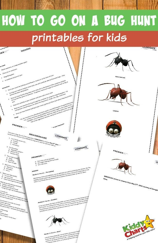 How to go on a bug hunt printables for kids