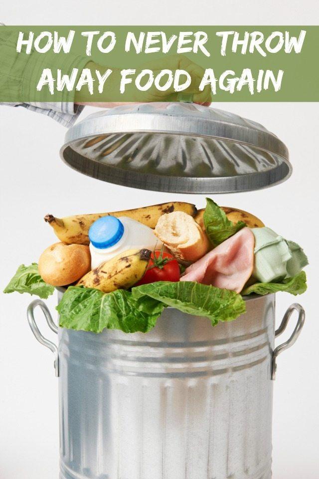 Are you wasteful with food, too much food waste? Do you want to stop throwing away your food and reduce your food wastage? This will, of course, help you be more thrifty with food and save on your weekly food bills? We have some great advice so you never have to throw your food away again.
